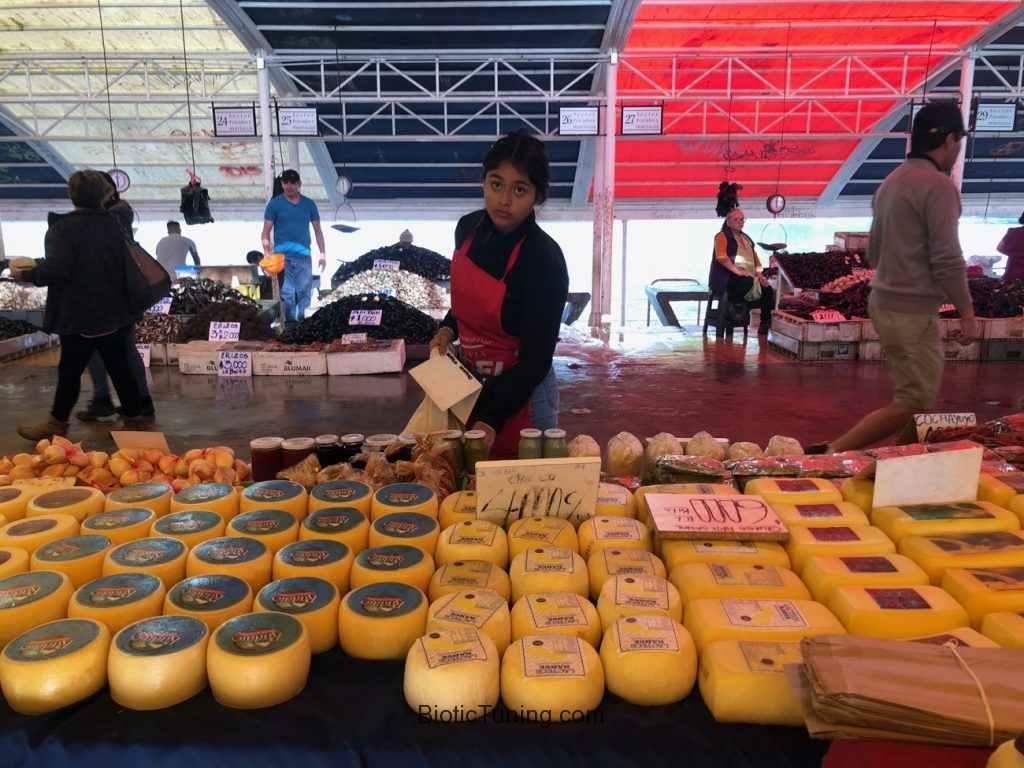 Niña vendiendo quesos en feria fluvial de Valdivia